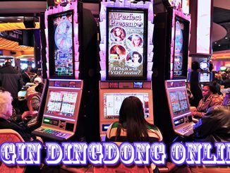 Login dingdong online